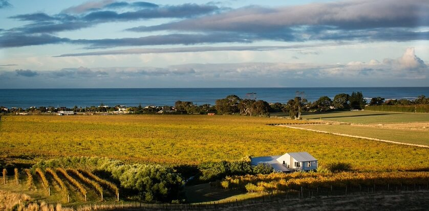 Weinregion Hawkes Bay