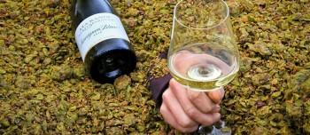 Sauvignon Blanc im Fass gereift