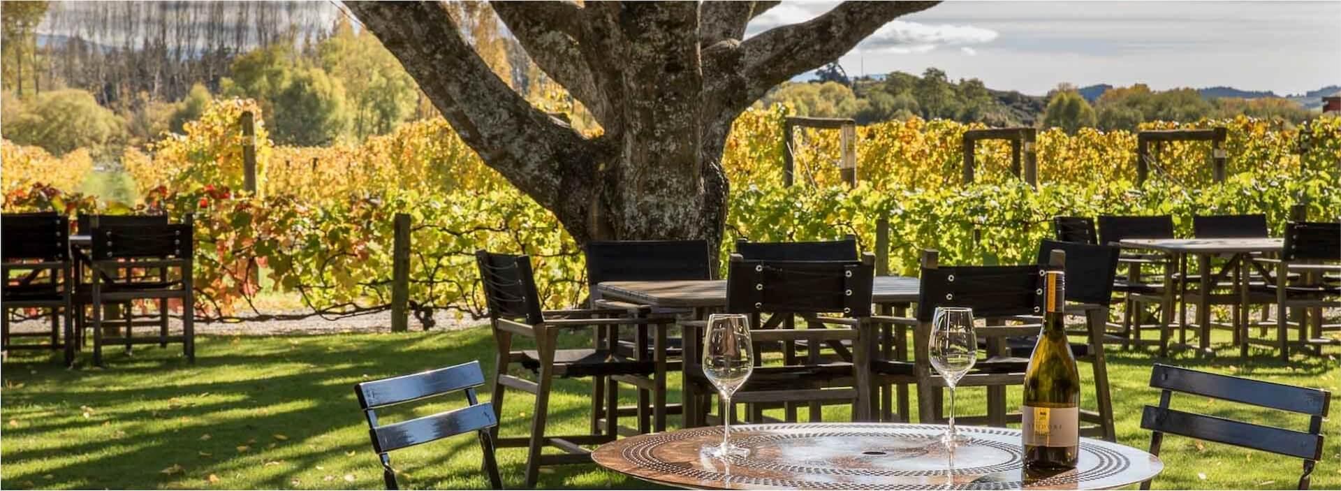 Neudorf Vineyards: eines der besten Weingüter Neuseelands
