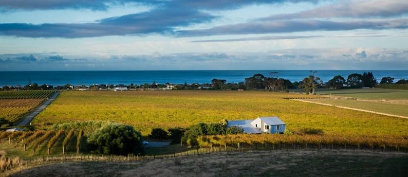 Weine von Te Awanga Estate